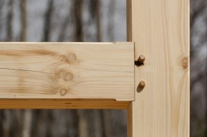 Eastern White Pine Timber Frame mortise and tenon joint