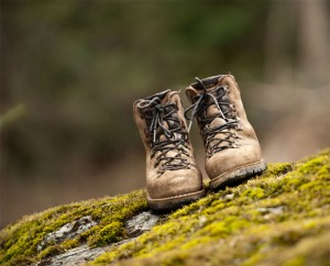 Danner Boots on rock with moss photo by Eric Morley