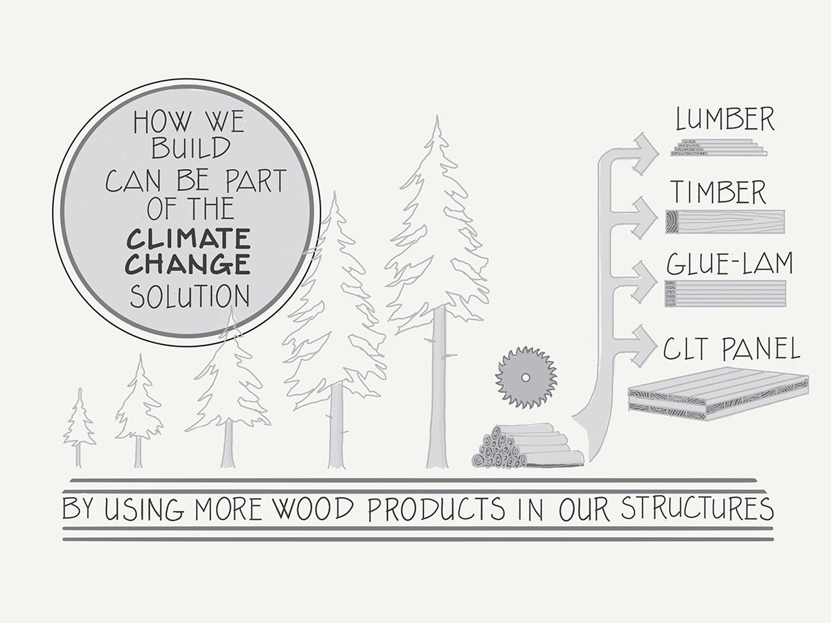 Carolina Timberworks - sustainability comic 2