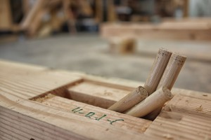 Oak pegs in a timber frame mortise