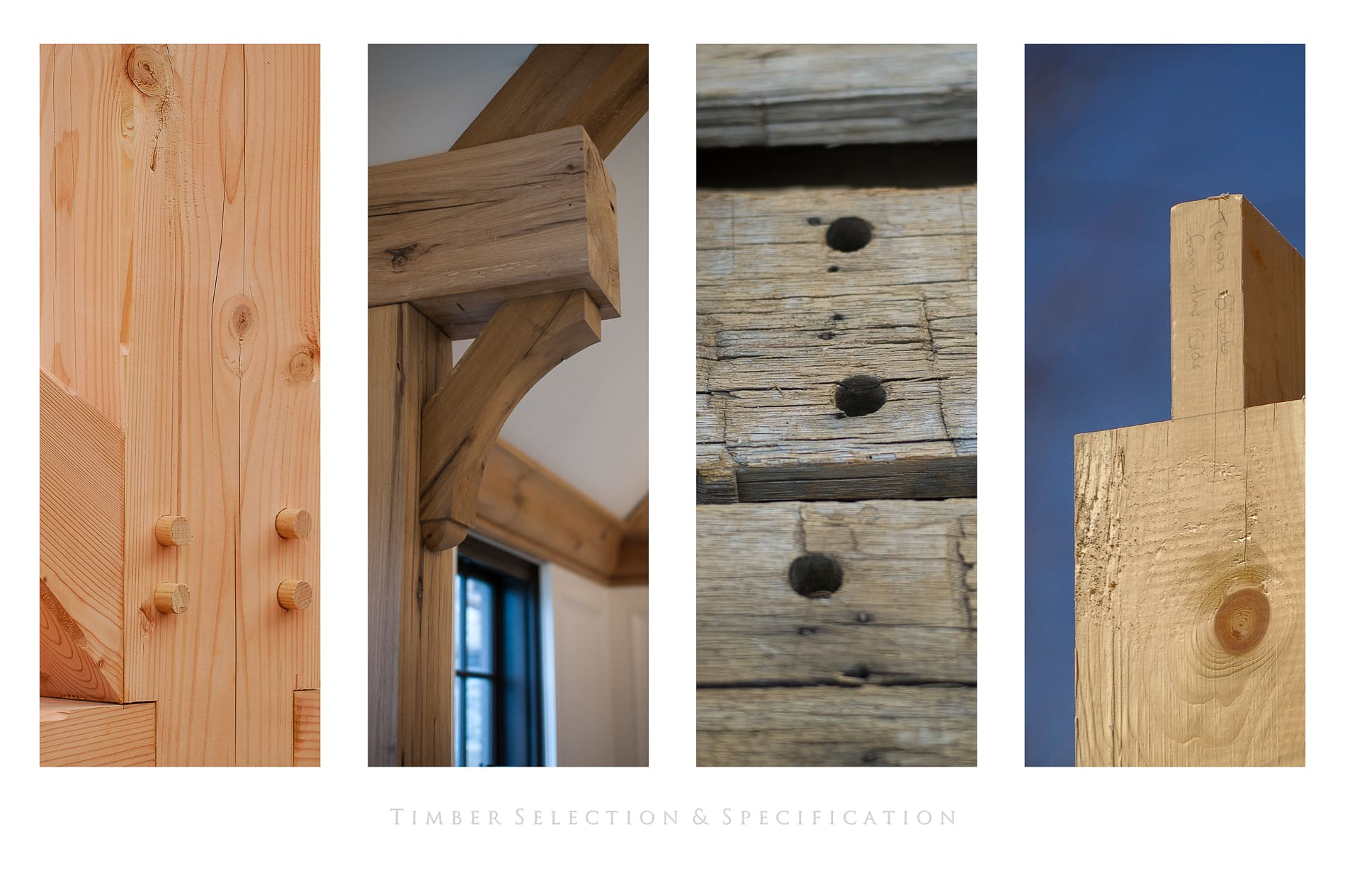 What is the best wood for Timber Framing? - Carolina Timberworks